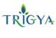 285 Medical Sales Representative Post Vacancy – Trigya Health Products Pvt. Ltd.